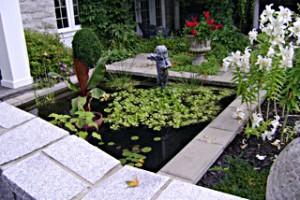 Jardin-Pierre-bassin