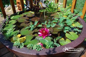 Jardin-aquadesign-bassin-patio