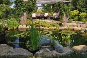 Jardin-babylone-eau