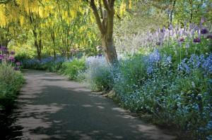 Maison-fleurs-vivaces-allee-fleurie