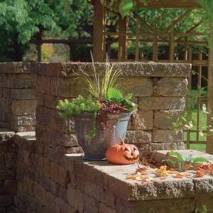 Maison-fleurs-vivaces-pot-automne
