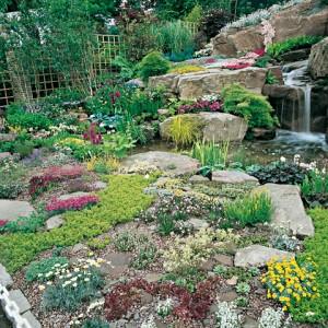 Du jardin dans ma vie jardins inspirants plus de 150 photos jardin - Fleurs de jardin vivaces ...