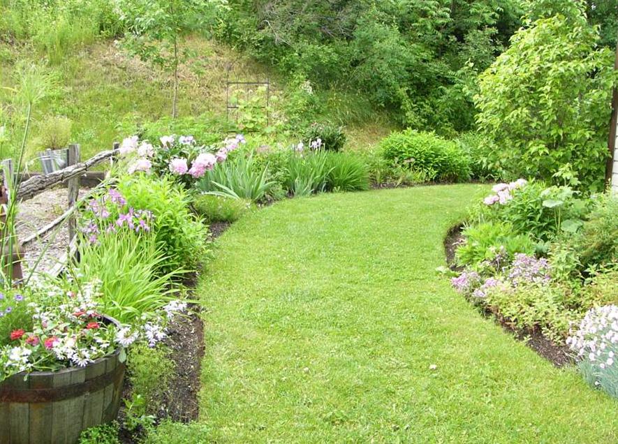 Courbes Romantiques Du Jardin Dans Ma Vie