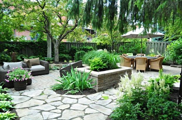 Plantes parfaites pour un jardin de peu de soins du for Entretien jardin emploi