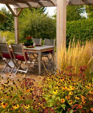 Plantes parfaites pour un jardin de peu de soins