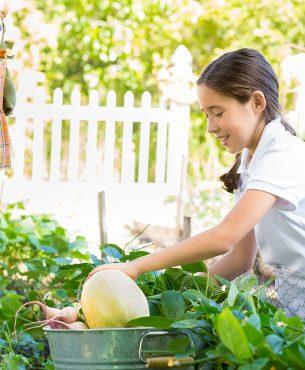 Comment faire ma plantation d'automne ?