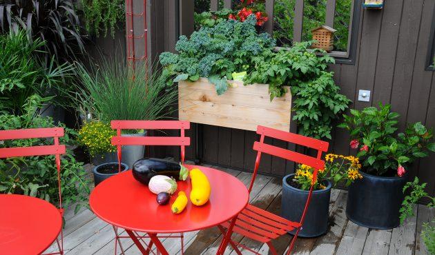Réalisez votre propre table potagère
