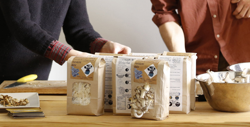Des champignons dans votre salon !