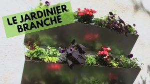 Cultivez vos légumes sur les murs
