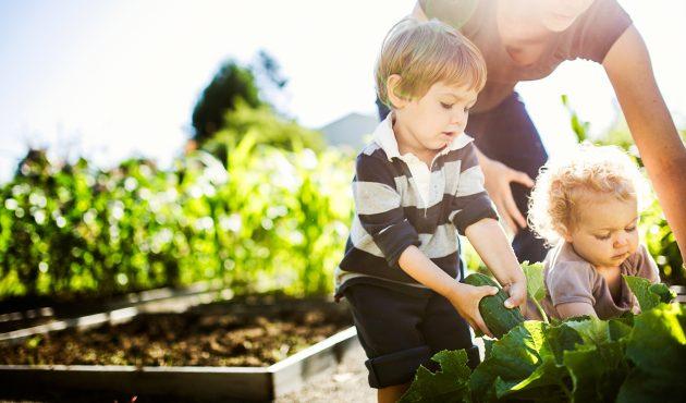 Enfants : les hits au jardin