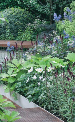 Un jardin « hygge »