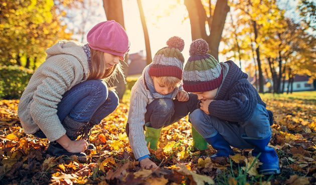 Trois activités à faire avec les enfants l'automne