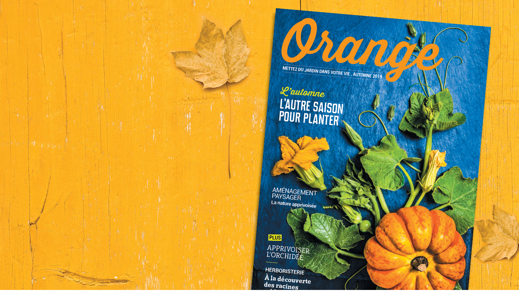 Magazine Orange 2019