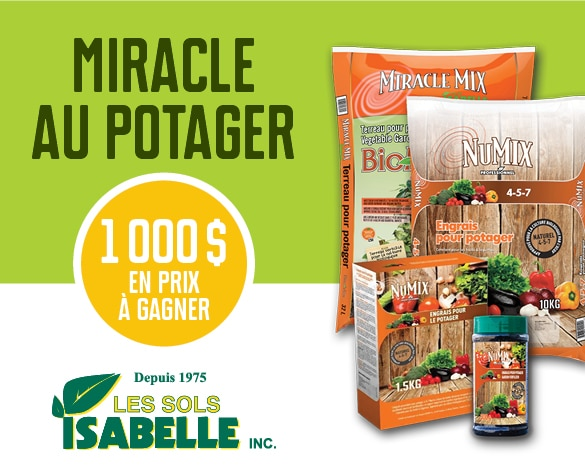 Concours Miracle au potager