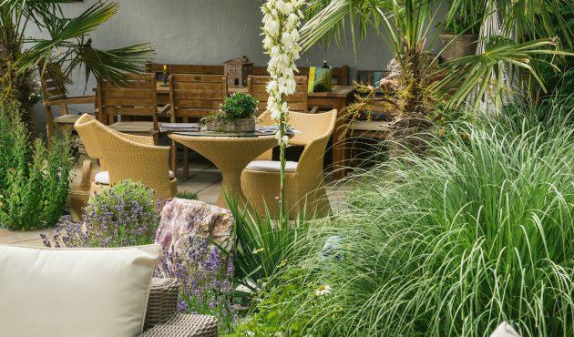 Un jardin californien dans votre cour