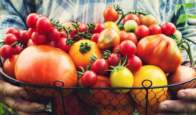 Légumes anciens à mettre au jardin