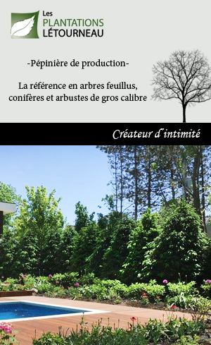 Plantation Létourneau