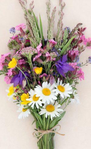 Vivaces pour bouquets maison