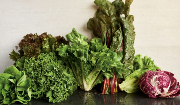 Réussir la culture des salades au potager