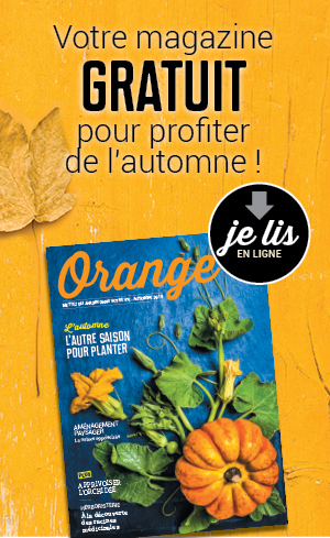 Magazine Orange 2019 ilot