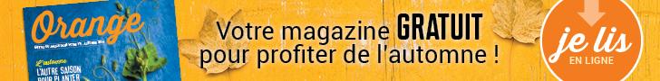 Magazine Orange 2019 banniere
