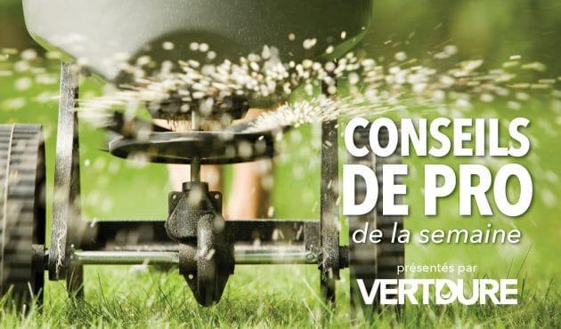 Tout savoir sur la fertilisation de la pelouse