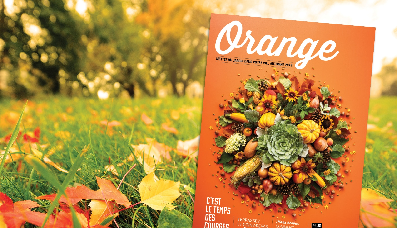Magazine Orange 2018