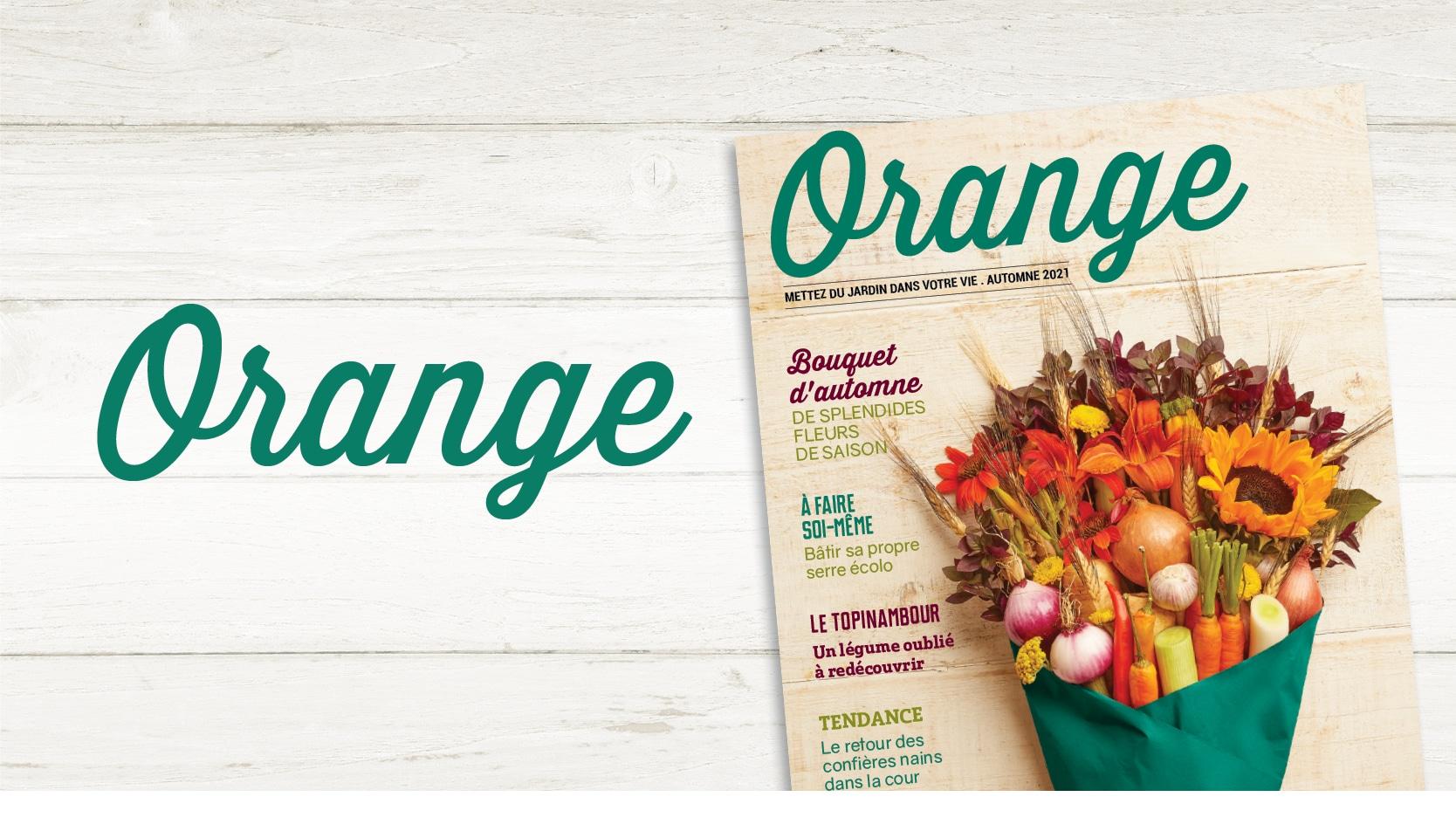 Magazine Orange 2021