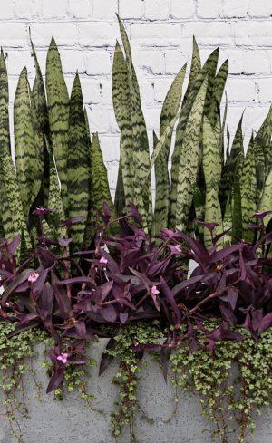 Deux arrangements floraux originaux