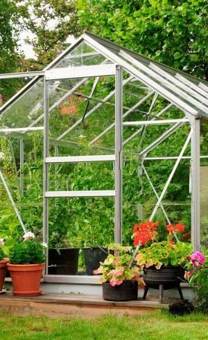 Votre propre serre de jardin : pourquoi pas ?
