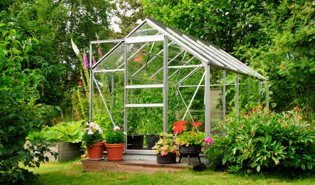 Votre propre serre de jardin : pourquoi pas ? – Du jardin ...