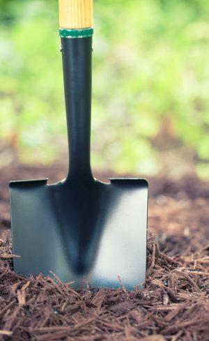 5 indispensables pour jardiner