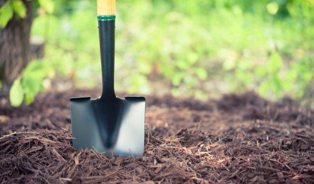 Achats essentiels pour jardiner