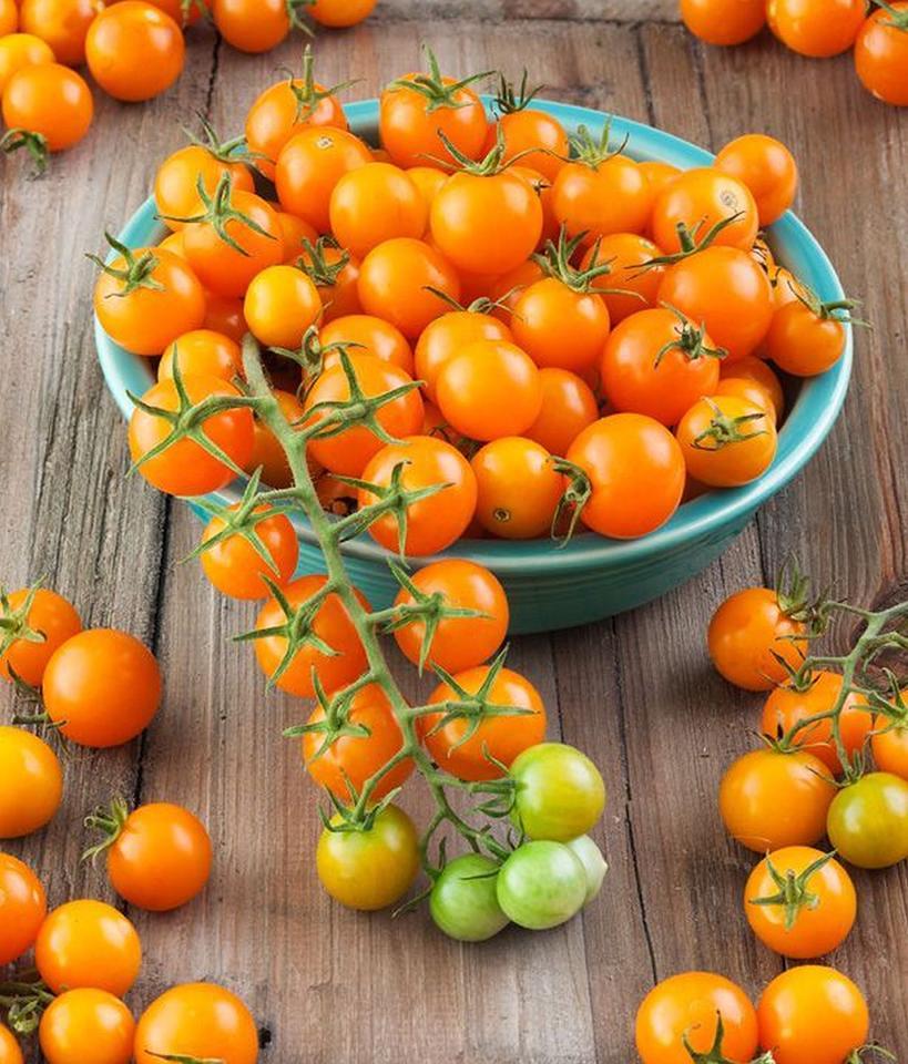 Meilleures tomates à jardin