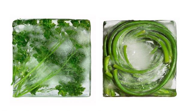 Fines herbes congelées