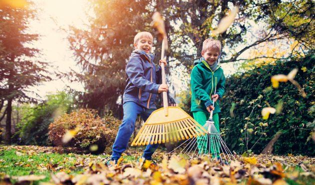 20 petits travaux pour fermer le jardin à l'automne