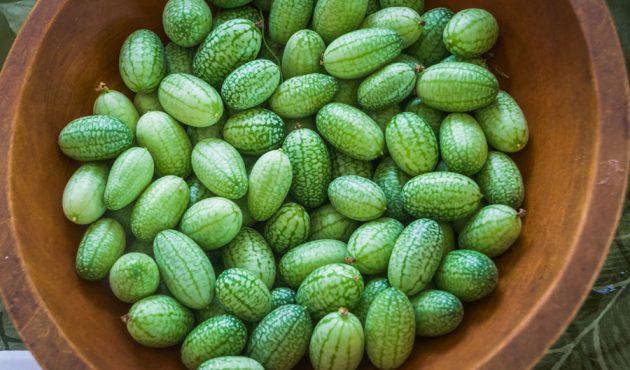 Légumes exotiques : idées alléchantes pour les cuisiner