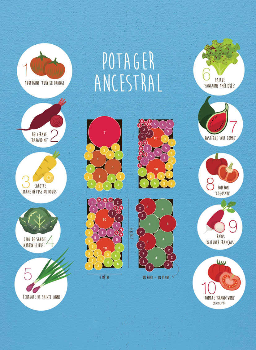 Plan du potager ancestral