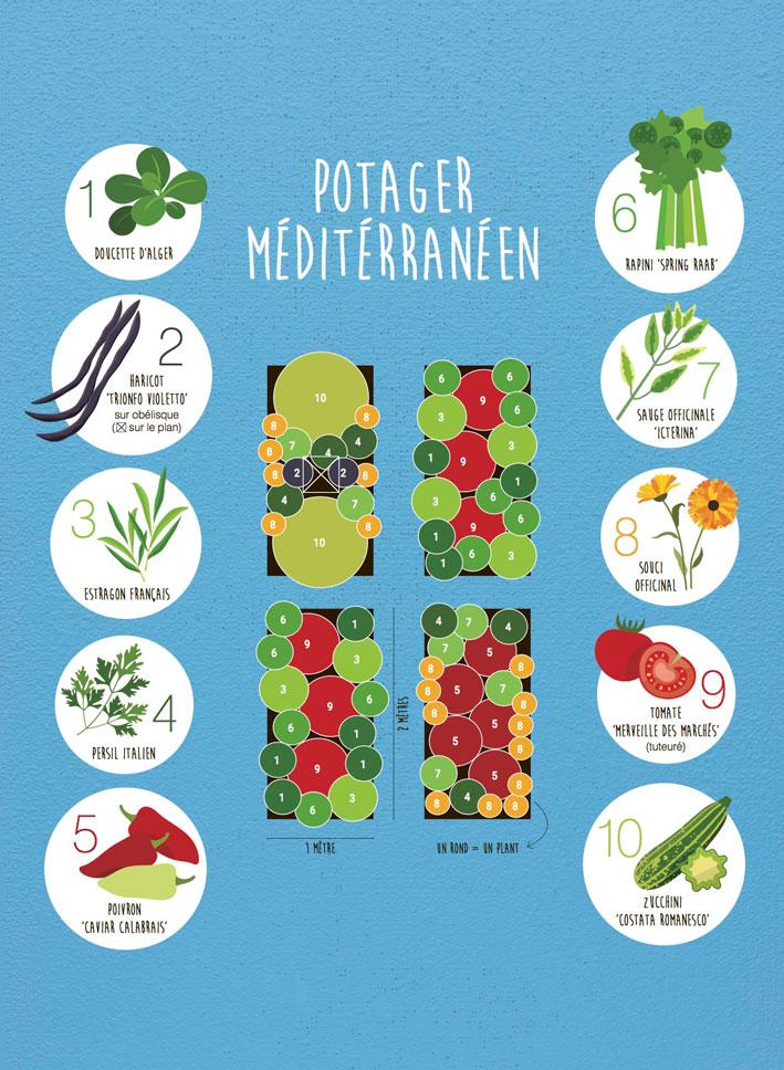 Plan de potager mediterraneen