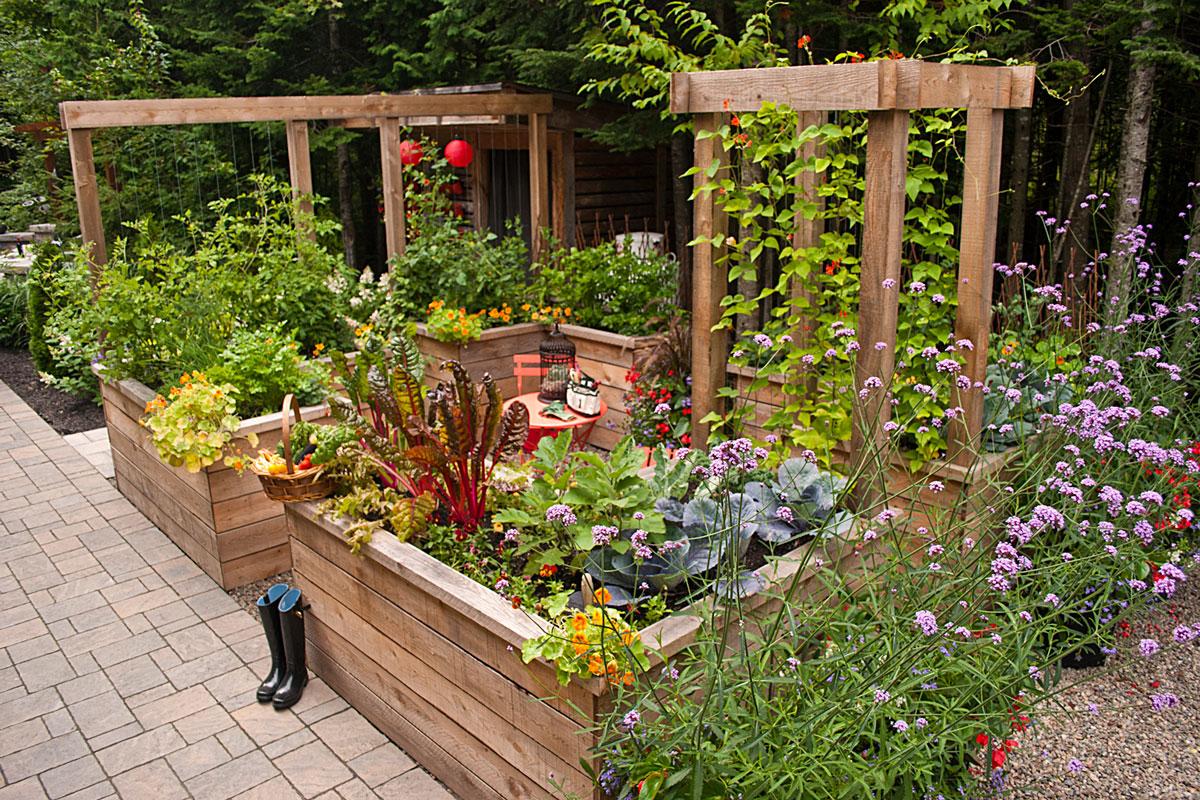 Jardin potager urbain - Du jardin dans ma vie