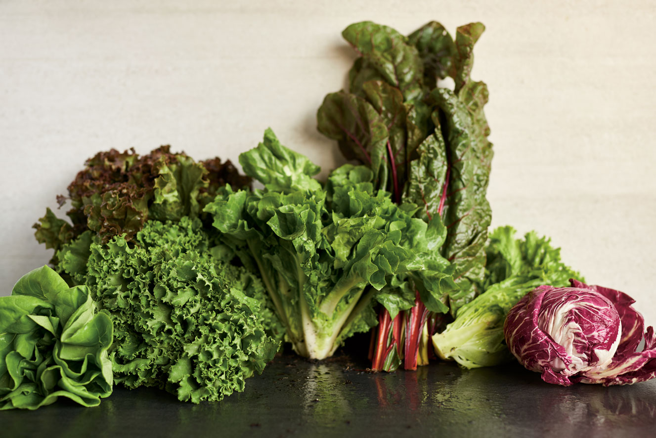 5 meilleures salades a planter au jardin