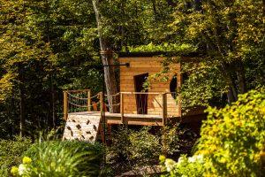 Cabane dans les bois