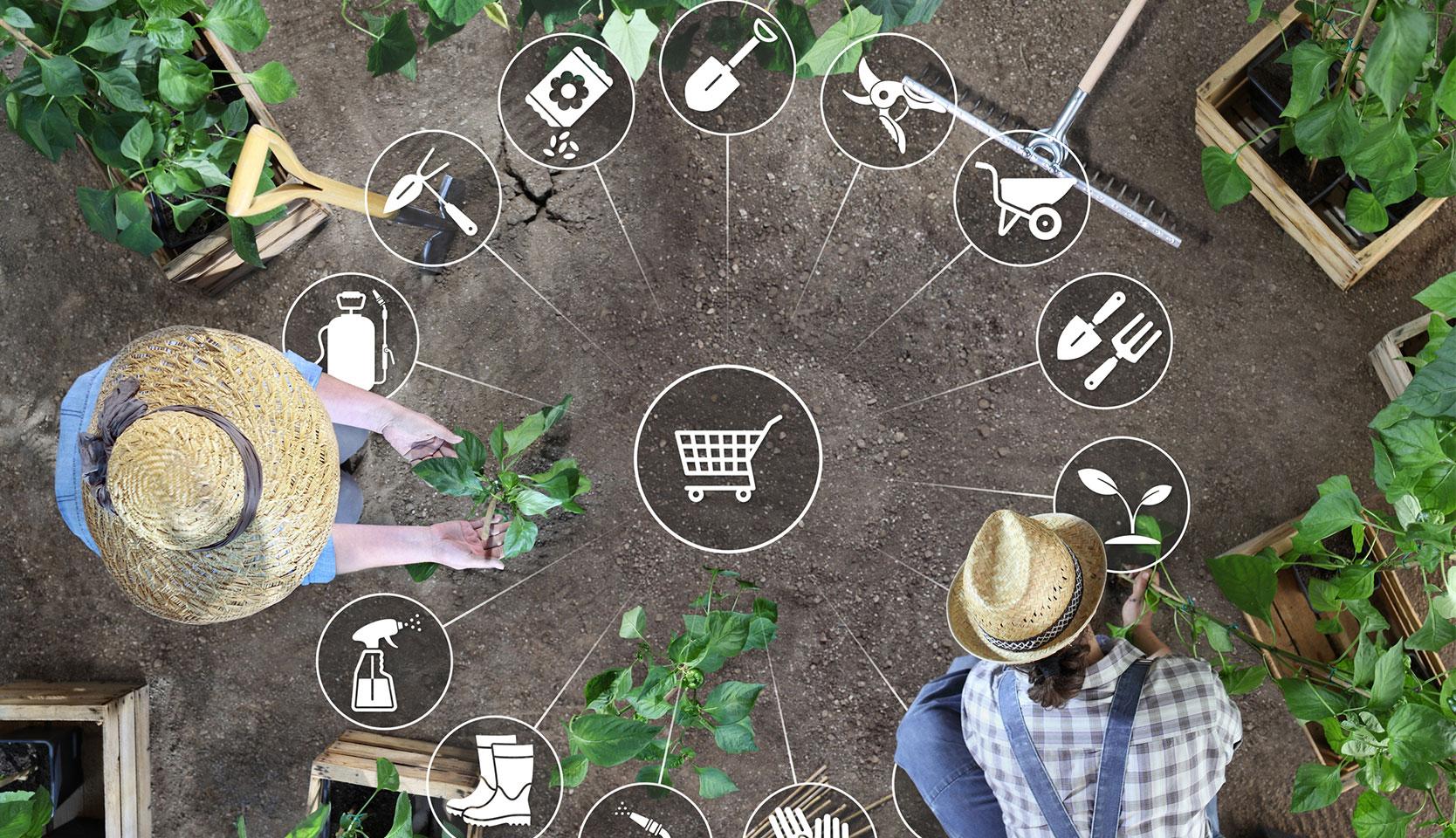 Acheter vos produits de jardinage en ligne