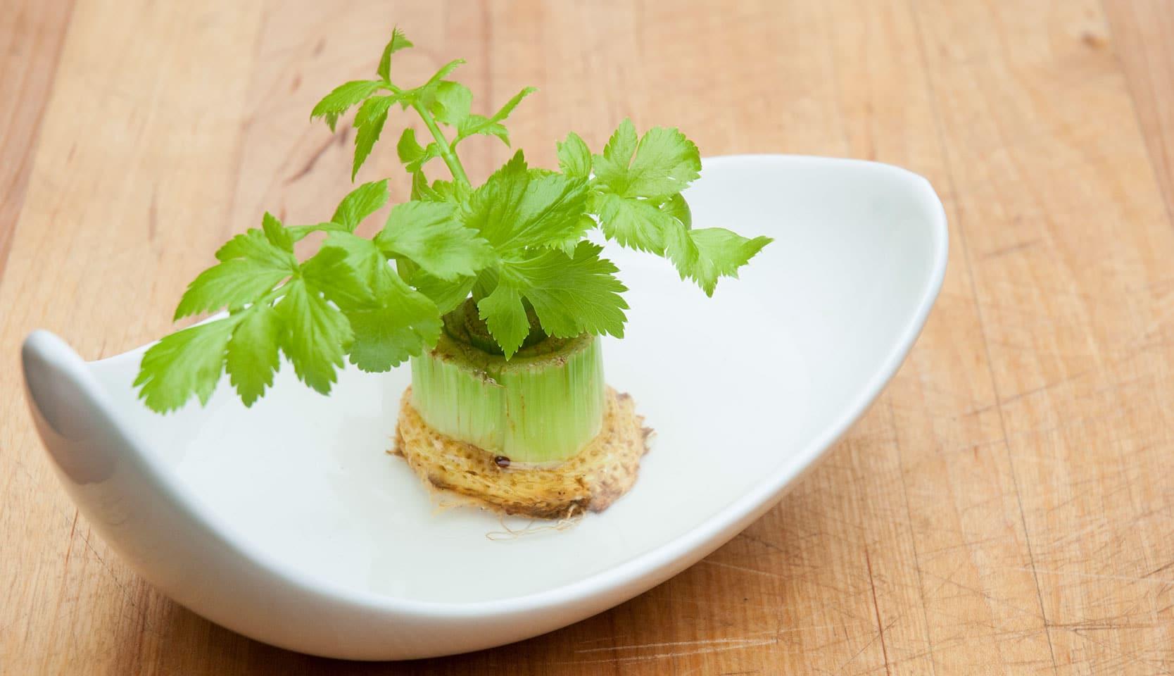 Légumes qui repoussent