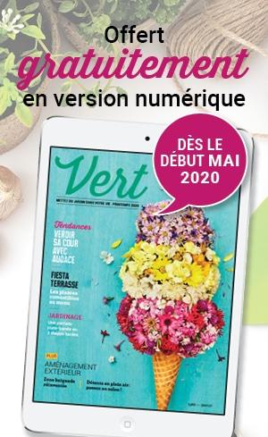 Le magazine Vert sera bientot disponible en version numerique