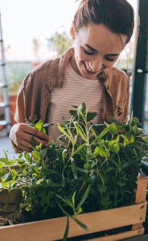 Cultiver son jardin : pour la quiétude de l'esprit et le plaisir des sens