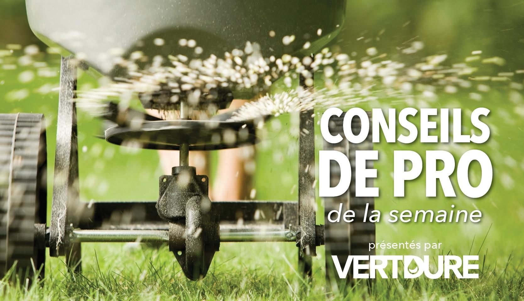 Fertilisation de la pelouse
