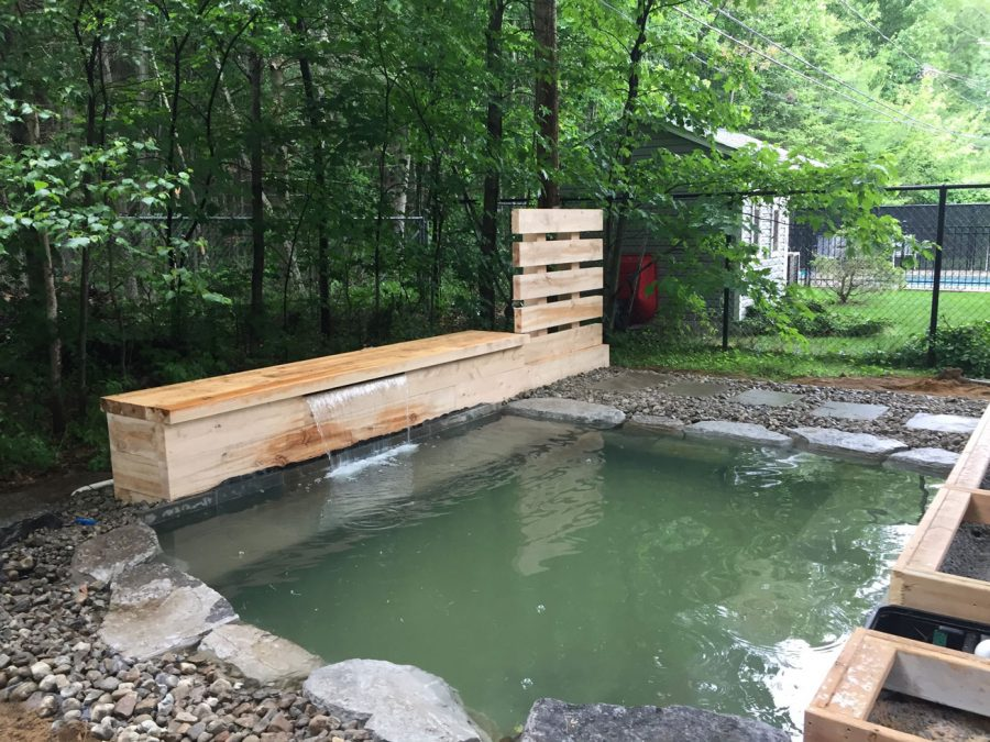 transformation d'une piscine en piscine naturelle