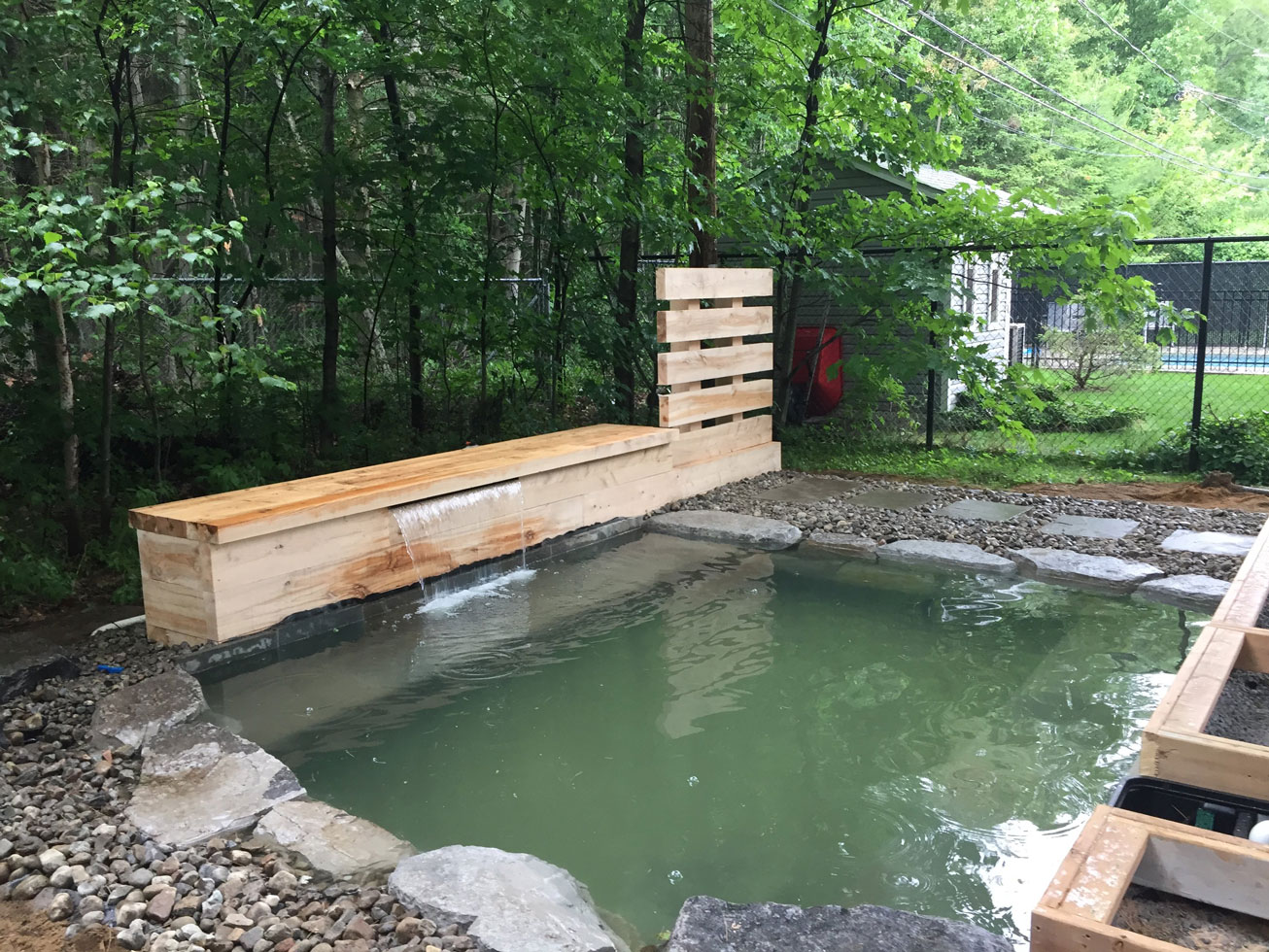 transformation d'une piscine en piscine naturelle