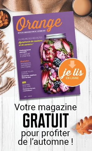 https://dujardindansmavie.com/Magazine/2020/Orange/mobile/